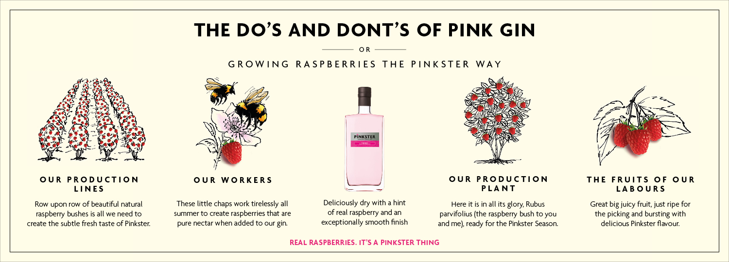 Dos and Donts of Pink Gin